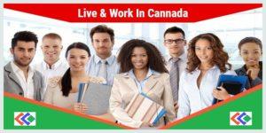 Canada Work Visa Consultants