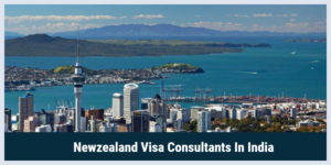 New Zealand Work Visa Consultants