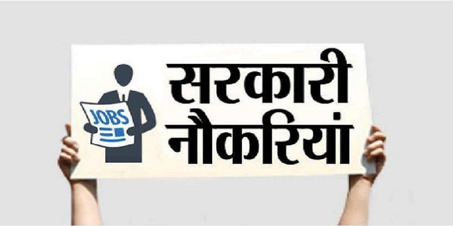 Sarkari Naukri, Sarkari Naukri: The Call of The Indian Youth