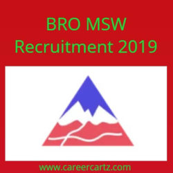 BRO MSW Recruitment 2019